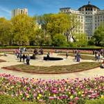More Central Park, Spring in Full Bloom