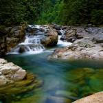 Lynn Creek unsuspended