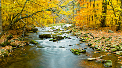 The Catskills in a yellow autumn robe