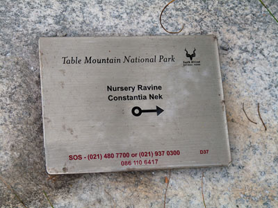 So I could not Afford Everest. I Climbed Table Mountain Instead. Part 2