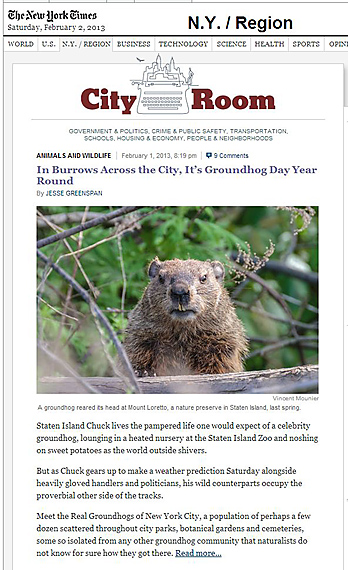Groundhog Day-jà Vu
