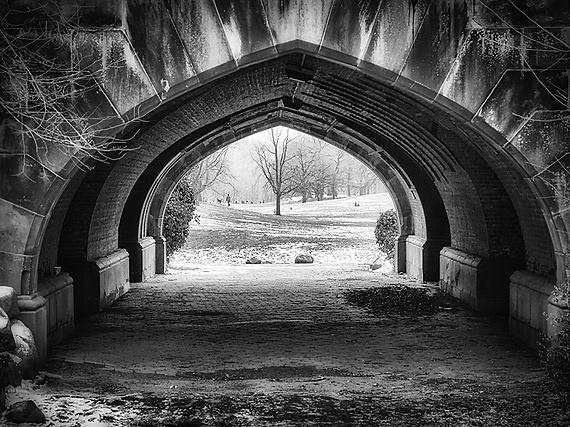 Prospect Park Last Winter