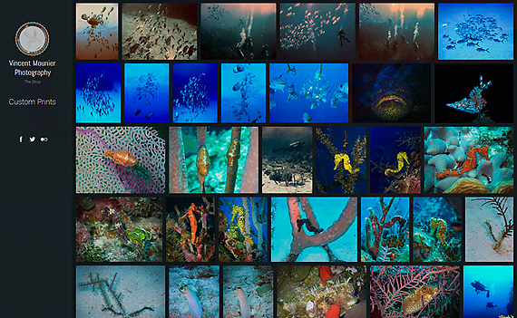 VMP Print Shop Preview and Underwater Shots