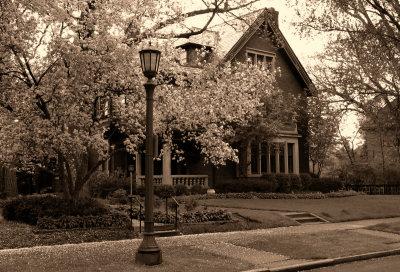 Monochrome Spring – St Paul, MN