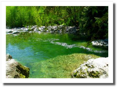 An afternoon by Lynn Creek ~