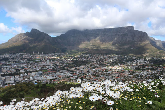 capetownflowers_sm1