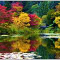 fall_sm