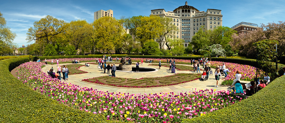 More Central Park Spring In Full Bloom Coriolistic