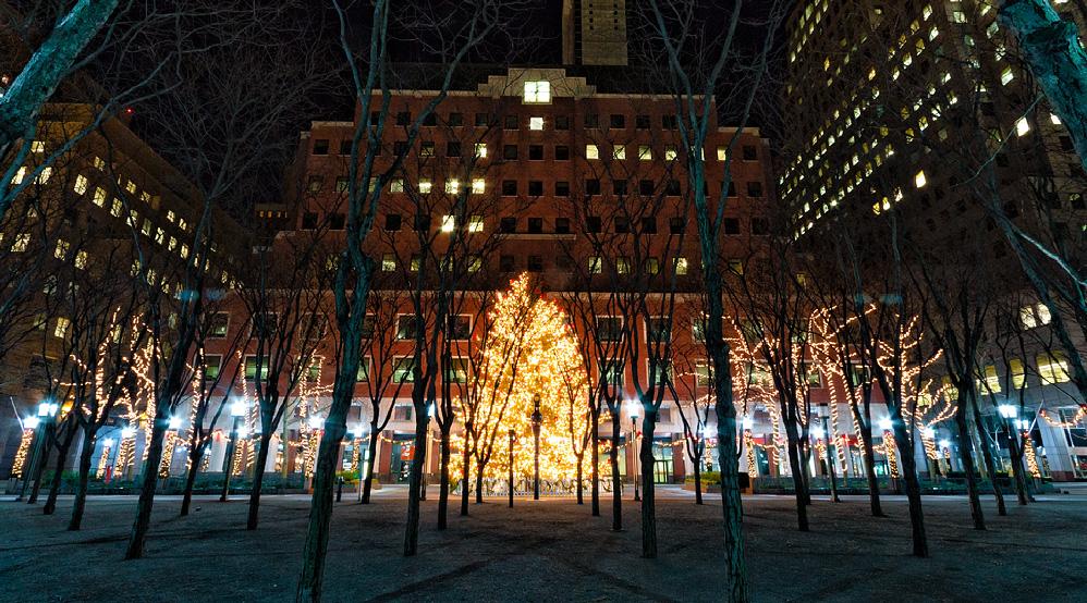 myrtle promenade brooklyn christmas eve 2011
