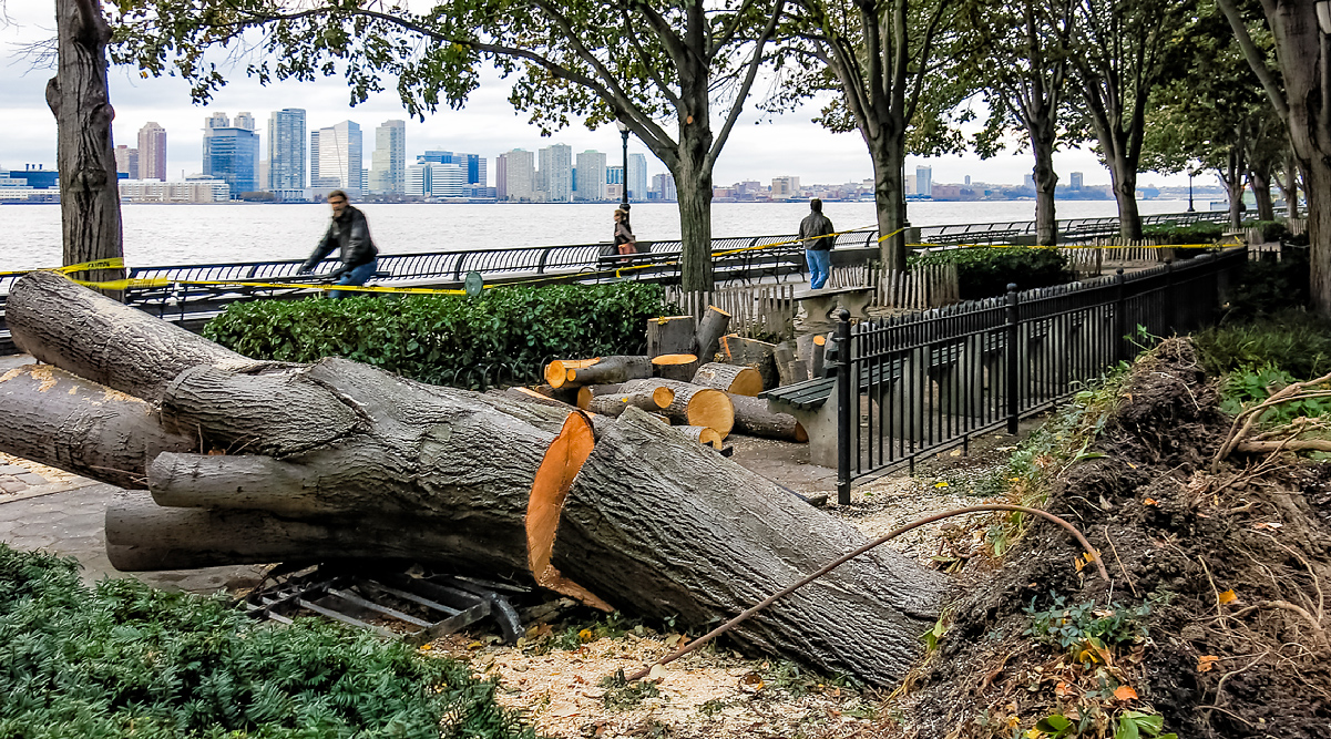 essay on the hurricane sandy essay October 30th, 2012 - while on a trip to nyc, my plans were derailed when hurricane sandy was announced to hit the day i was suppose to fly out with my flight cancelled until the following friday.